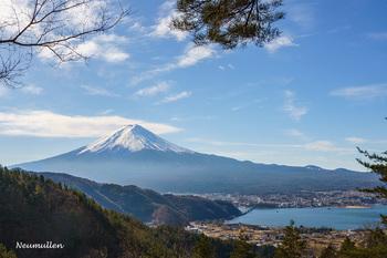 hahano_shirataki_9616-1_bl.jpg
