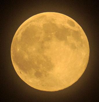 super_moon20140811-1.jpg